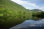 Saco River Framed Prints - Crawford Notch State Park - White Mountains NH USA Framed Print by Erin Paul Donovan
