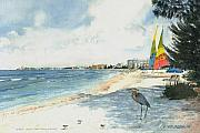 Blue Heron Prints - Crescent Beach on Siesta Key Print by Shawn McLoughlin