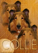 Collies Digital Art Posters - Crescent Moon - Collie Poster by Renae Frankz