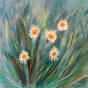 Gorna Prints - Daisies Print by Gina De Gorna