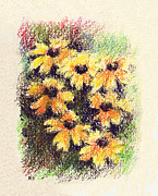 Daisy Drawings Metal Prints - Daisies Metal Print by Rachel Christine Nowicki