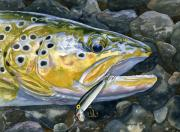 Trout Paintings - Dinner Gone Bad by Mark Jennings