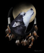 Husky Photo Framed Prints - Dream Catcher Framed Print by Stephanie Laird
