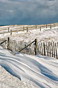 Nauset Beach Posters - Drifting snow along the beach fences at Nauset Beach in Orleans  Poster by Matt Suess