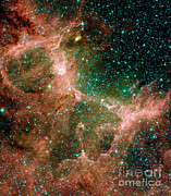 Messier 16 Prints - Eagle Nebula Print by Nasa