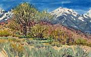 Nevada Painting Posters - East of the Sierra Nevadas Poster by Donald Maier
