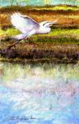 Nj Pastels - Egret 1 by Peter R Davidson
