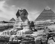 Great Sphinx Framed Prints - Egypt: Great Sphinx Framed Print by Granger