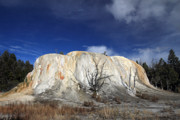 Elephant Photos - Elephant Springs Yellowstone by Pierre Leclerc