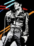 Presley Framed Prints - Elvis Framed Print by Luis Ludzska