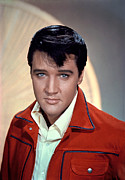 Elvis Metal Prints - Elvis Presley Metal Print by Everett