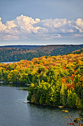 Fall Photo Prints - Fall forest and lake Print by Elena Elisseeva