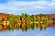 Lake Photos - Fall forest reflections by Elena Elisseeva
