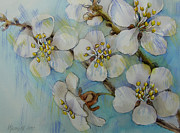 Apple Tree Drawings Metal Prints - Flowering Metal Print by Khromykh Natalia