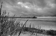 Ocean Landscape Originals - Folly Beach Pier by Dustin K Ryan