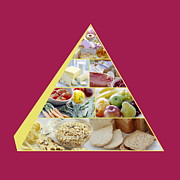 Proportions Prints - Food Pyramid Print by David Munns