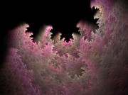 Apophysis Photos - Forest by Michele Caporaso