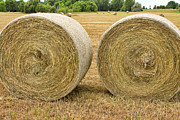 Office Space Photo Framed Prints - 2 Freshly Baled Round Hay Bales. Framed Print by James Bo Insogna