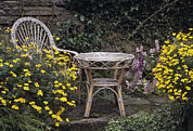 Wicker Furniture Posters - Garden Furniture Poster by Archie Young