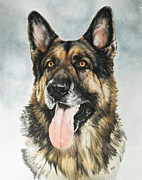 Police Dog Prints - German Shepherd Print by Barbara Keith