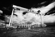 Giant Harland And Wolff Crane Goliath At Shipyard Titanic Quarter Queens Island Belfast Print by Joe Fox
