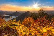 Fall Cards Prints - Golden Hour Print by Debra and Dave Vanderlaan