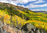 John Myers - Grand Mesa Autumn Vista