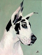 Great Dane Oil Paintings - Great Dane by Elizabeth Barrett