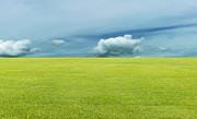 Heavens Art - Green Field And Blue Sky by Setsiri Silapasuwanchai