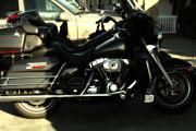 Wingsdomain Art and Photography - Harley-Davidson Motorcycle . 7D10793