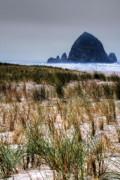 Shoreline Art - Haystack Rock on Cannon Beach by David Patterson