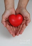 Featured Art - Heart Disease Prevention by Photo Researchers, Inc.