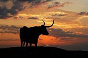 Robert Anschutz - Into The Sunset