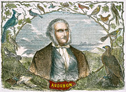 Sideburns Framed Prints - John James Audubon Framed Print by Granger