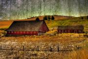 Barns Digital Art - Johnson Road Barns by David Patterson
