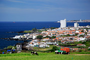Communities Prints - Lagoa - Azores islands Print by Gaspar Avila