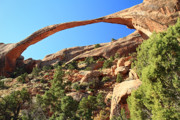 Utah Framed Prints - Landscape arch in Arches National Park Framed Print by Pierre Leclerc