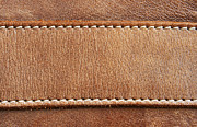 Animal Abstract Photos - Leather with stitching by Blink Images