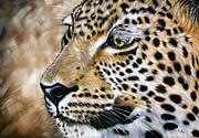 Ilse Kleyn - Leopard