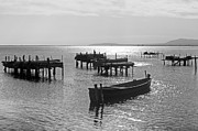Rowing Metal Prints - Lesina - Apulia Metal Print by Joana Kruse