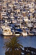 Docked Boat Prints - Marina Print by Jeremy Woodhouse