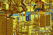 Processor Photo Metal Prints - Microprocessor Metal Print by Michael W. Davidson