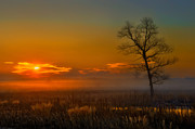 Jay Sheinfield - Missouri Wetlands Sunrise