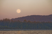 Sooke Prints - Moonrise At Sunset Along The Shores Print by Taylor S. Kennedy