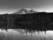 Snow-capped Peak Prints - Mount Rainier National Park Print by Brendan Reals