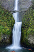 Green Foliage Photo Prints - Multnomah Falls Waterfall Oregon Columbia River Gorge Print by Dustin K Ryan