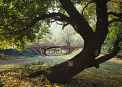 1980s Photo Prints - New York City, Central Parks Gothic Print by Everett