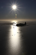North American Aviation Prints - North American T-6 Texan Trainer Print by Daniel Karlsson