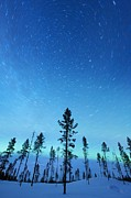 Snowy Night Night Photo Prints - Northern Lights Print by Jeremy Walker