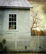 Old Farm  House Window  Print by Sandra Cunningham
